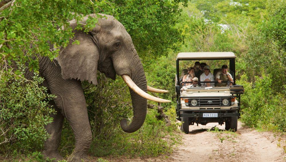 Resultado de imagen para Parque  Kruger