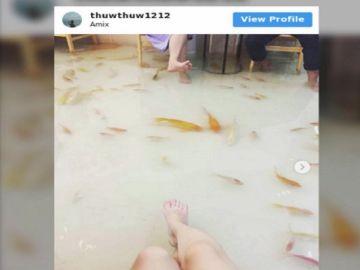 La cafetería inundada en la que peces nadan a tus pies