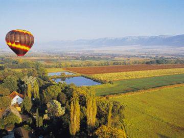 En globo sobre viñedos