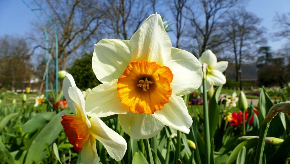 Escapadas de primavera