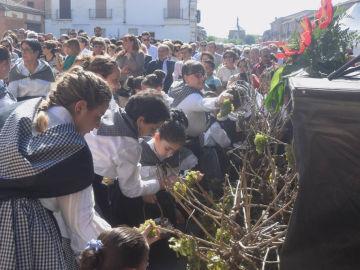 Fiesta de la vendimia de Rueda